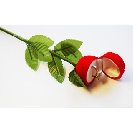 958 Dovanų dėžutė Rožė