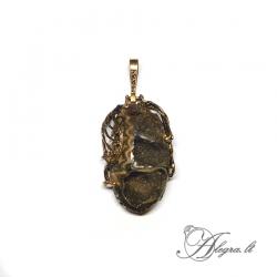 1893 Brass pendant with Ammonite