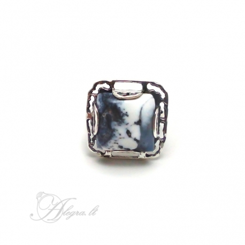 2019 Sidabrinis žiedas su Peizažiniu Agatu Ag 925